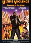 Revenge of the Ninja poster 3