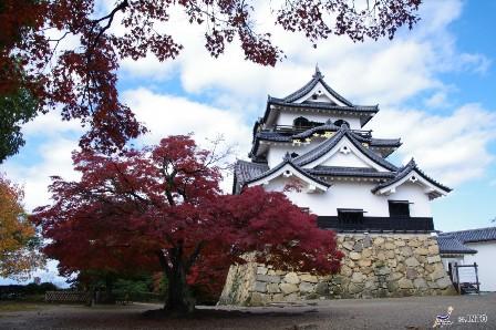 Hikone Castle (©Yasufumi Nishi/© JNTO)