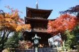 Gotokuji Temple Tokyo ©Yasufumi Nishi (c) JNTO