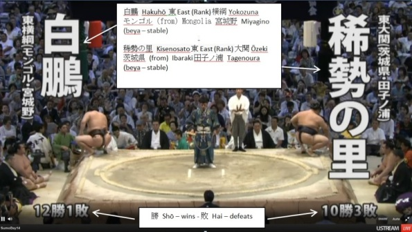 sumo TV captions