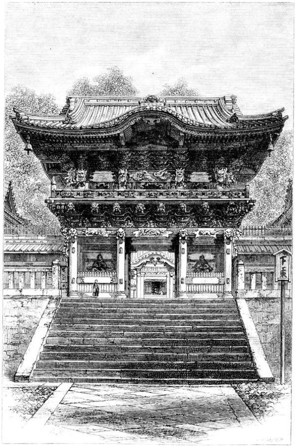 nikko sketch